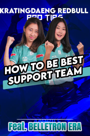 support team web